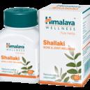 Shallaki / Boswellia Serrata 60 kaps